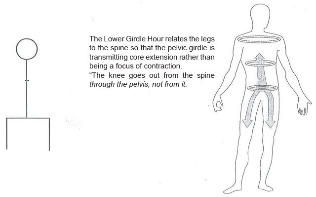 body integrate – The Lower Girdle Hour