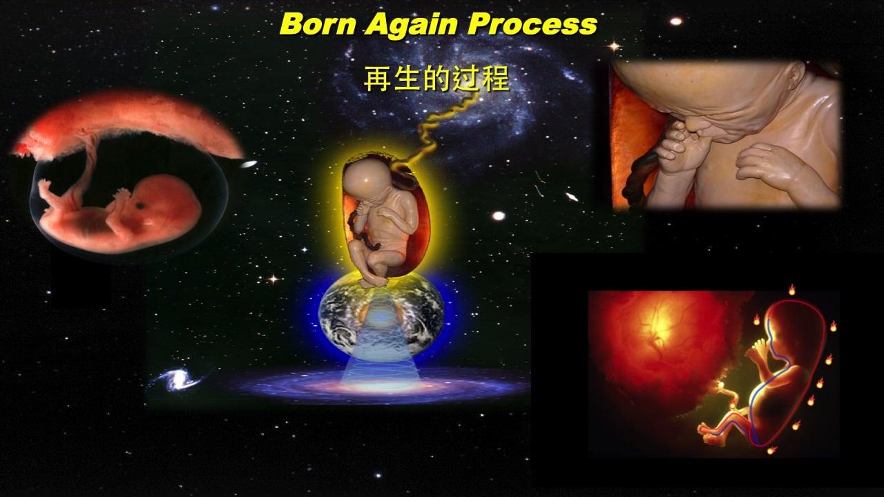 Born Again Process