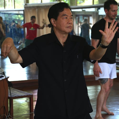 Thailand Winter 2020 Week 4: Fusion II, III, Tai Chi I and Instructor Certification Training